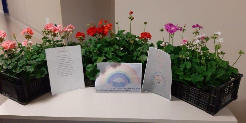 imm.-donazione-fiori-FILEminimizer
