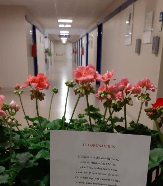 imm.-donazione-fiori1-FILEminimizer