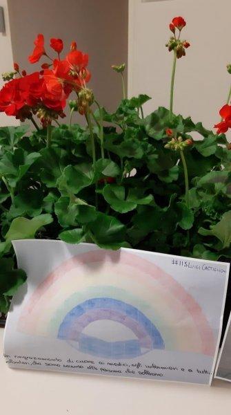 imm.-donazione-fiori4-FILEminimizer