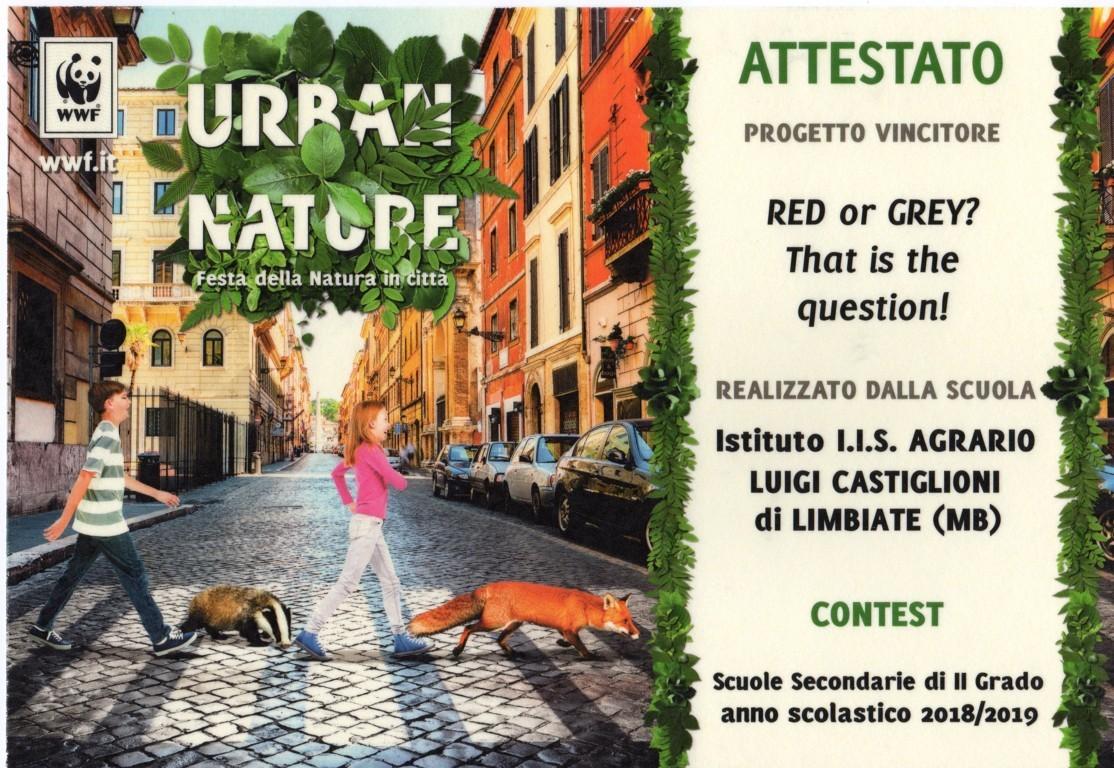 La nostra scuola ha vinto il 1° premio del concorso – WWF – Urban Contest Nature – Progetto scoiattolo