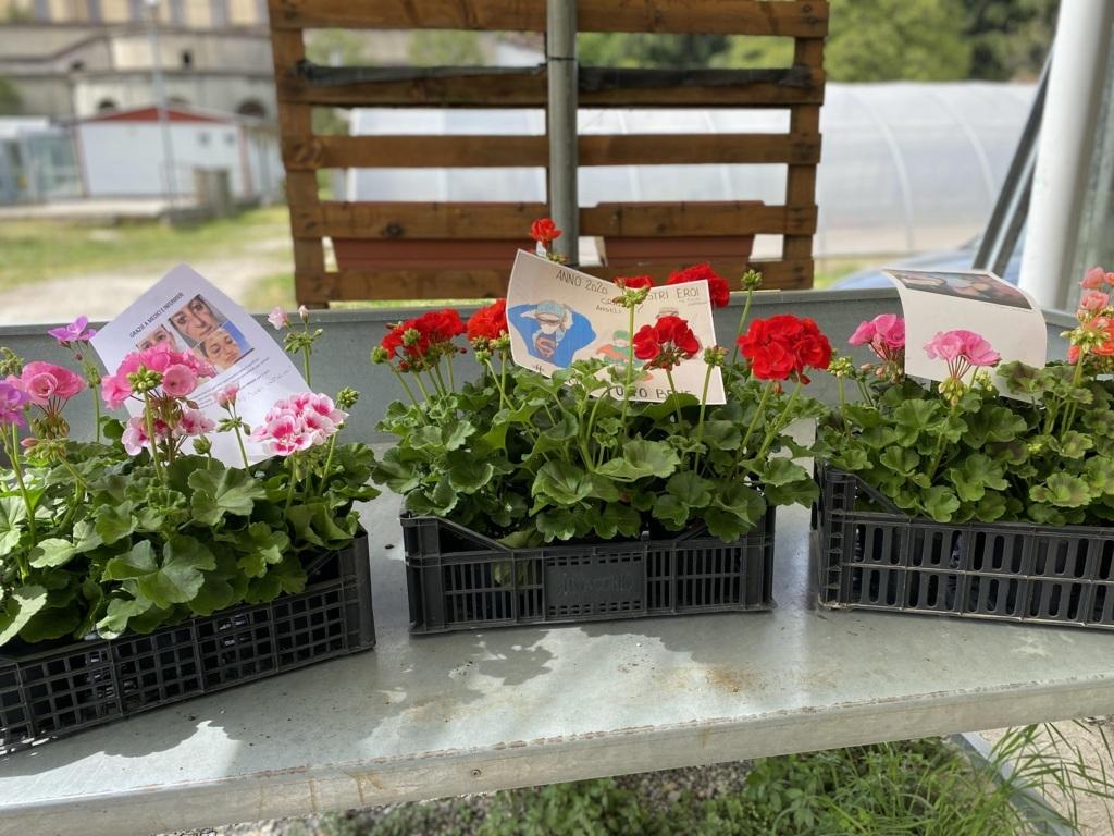 Donazione piante all'ospedale di Saronno