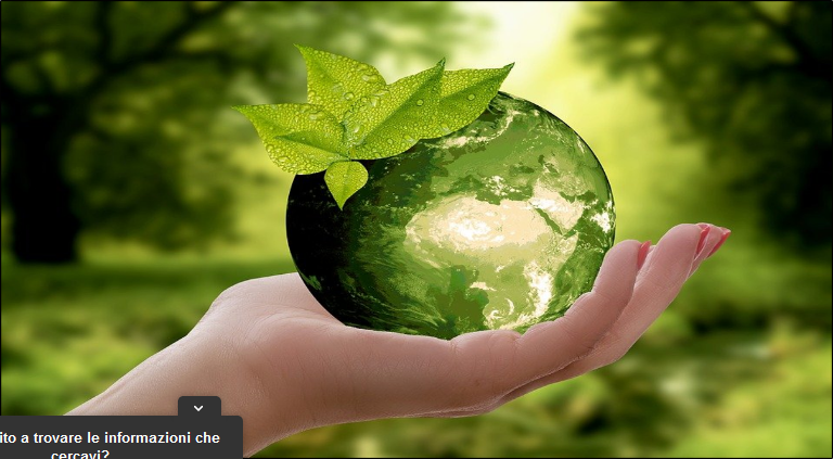 Immagini per la Terra, concorso per studenti di tutte le scuole su ecologia e sostenibilità: 8.000 euro in palio